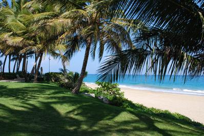 Bahia Residence - green area by beach